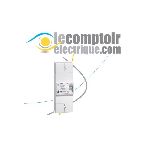 Disjoncteur de branchement ERDF 2P 45A differentiel 500mA selectif - LEGRAND 401003 Disjoncteurs de Branchement