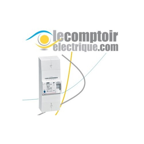 Disjoncteur de branchement ERDF 2P 60A differentiel 500mA selectif - LEGRAND 401004 Disjoncteurs de Branchement